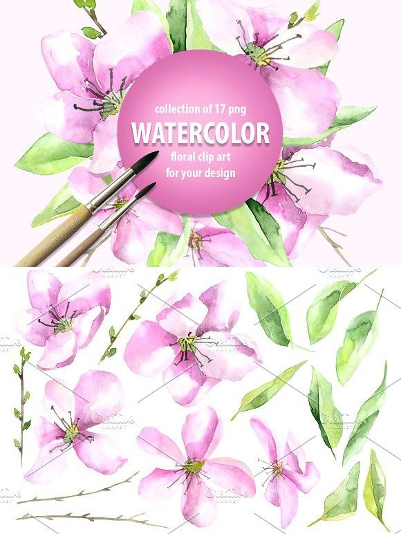 Watercolor pink flowers and leaves. Poster Templates