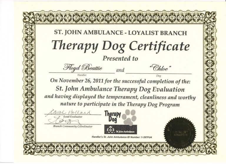 Free Free Service Dog Certification Download Exclusive Dog