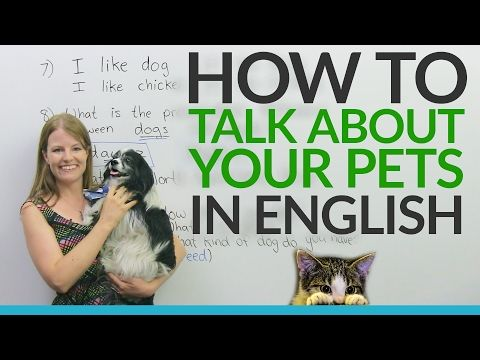 Emma engVid - ALL English lessons   IETLS   English lessons, Learn