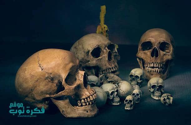صور جماجم مرعبة جدا 2019 خلفيات جماجم نارية كيوت ملونه Hd 2 Skull Art