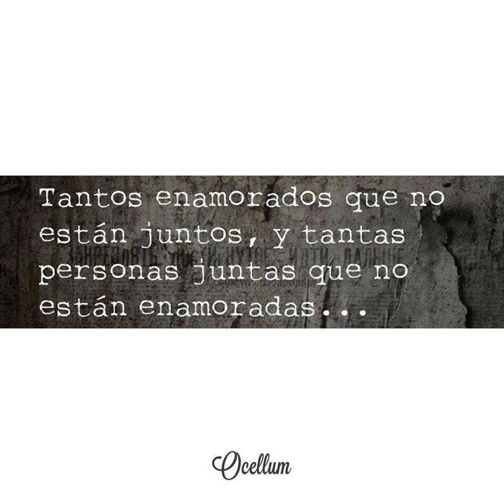 Caprichos de la vida  #love #amour #amor #life #couple #quotes