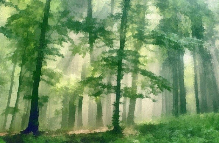 Keren 30 Gambar Pemandangan Hutan Animasi Pertanian Kehutanan Dan Perikanan Satu Hari Nanti Uncle Nak Ke Korea Juga 5o Di 2020 Pemandangan Seni Ilustrasi Lukisan