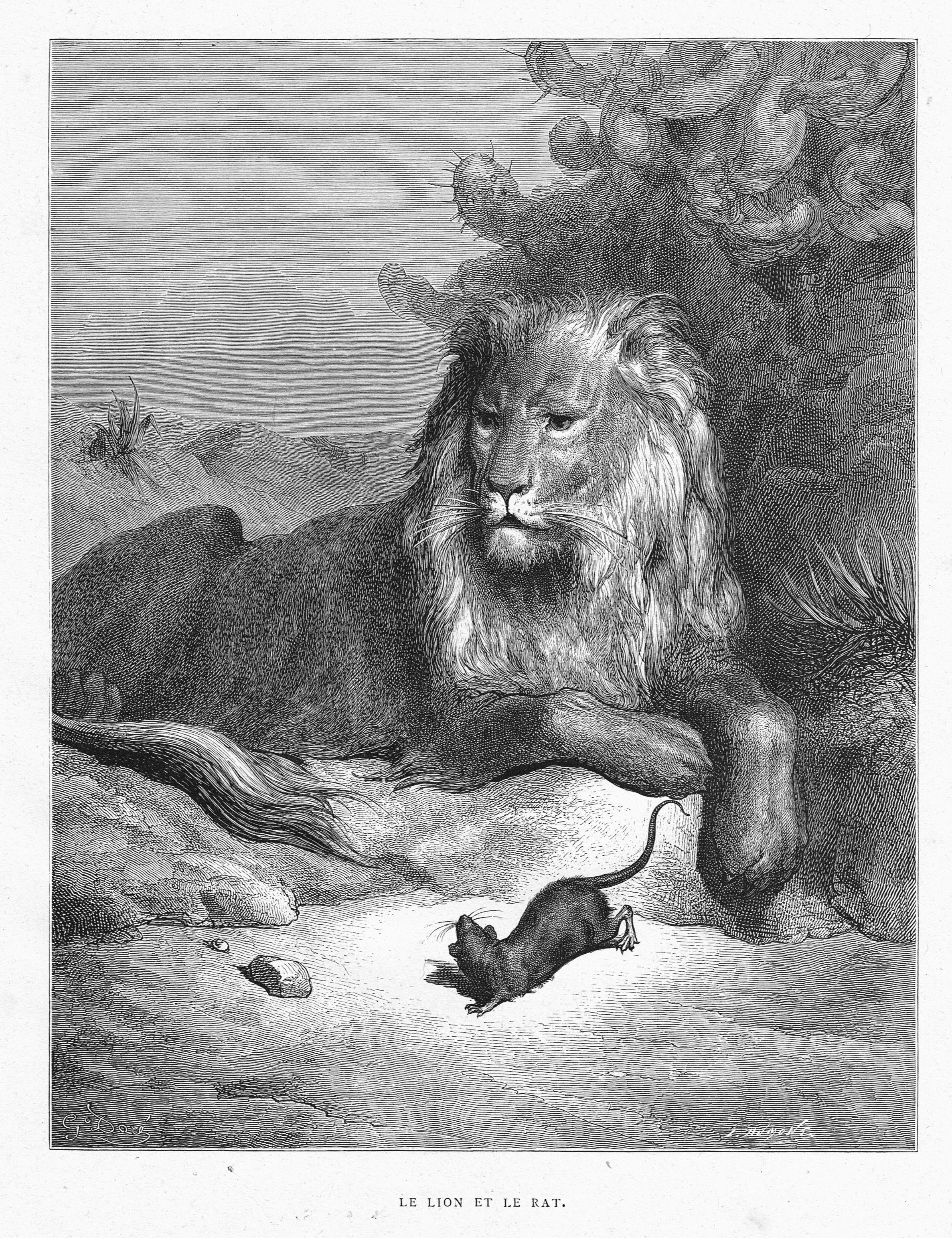 Le Lion Et Le Rat By Gustave Doré From The Book Les Fables De La