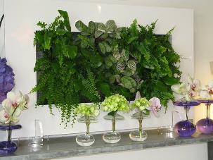 vivre feng shui bordeaux plantes et feng shui plantes feng shui pinterest feng shui les. Black Bedroom Furniture Sets. Home Design Ideas