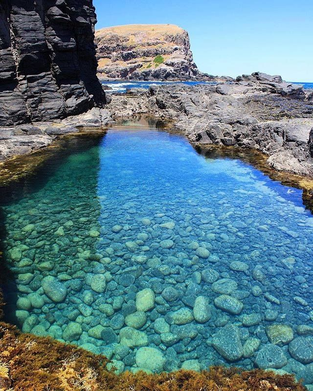 Bushrangers Bay rock pool | Rock pools, Most beautiful ...