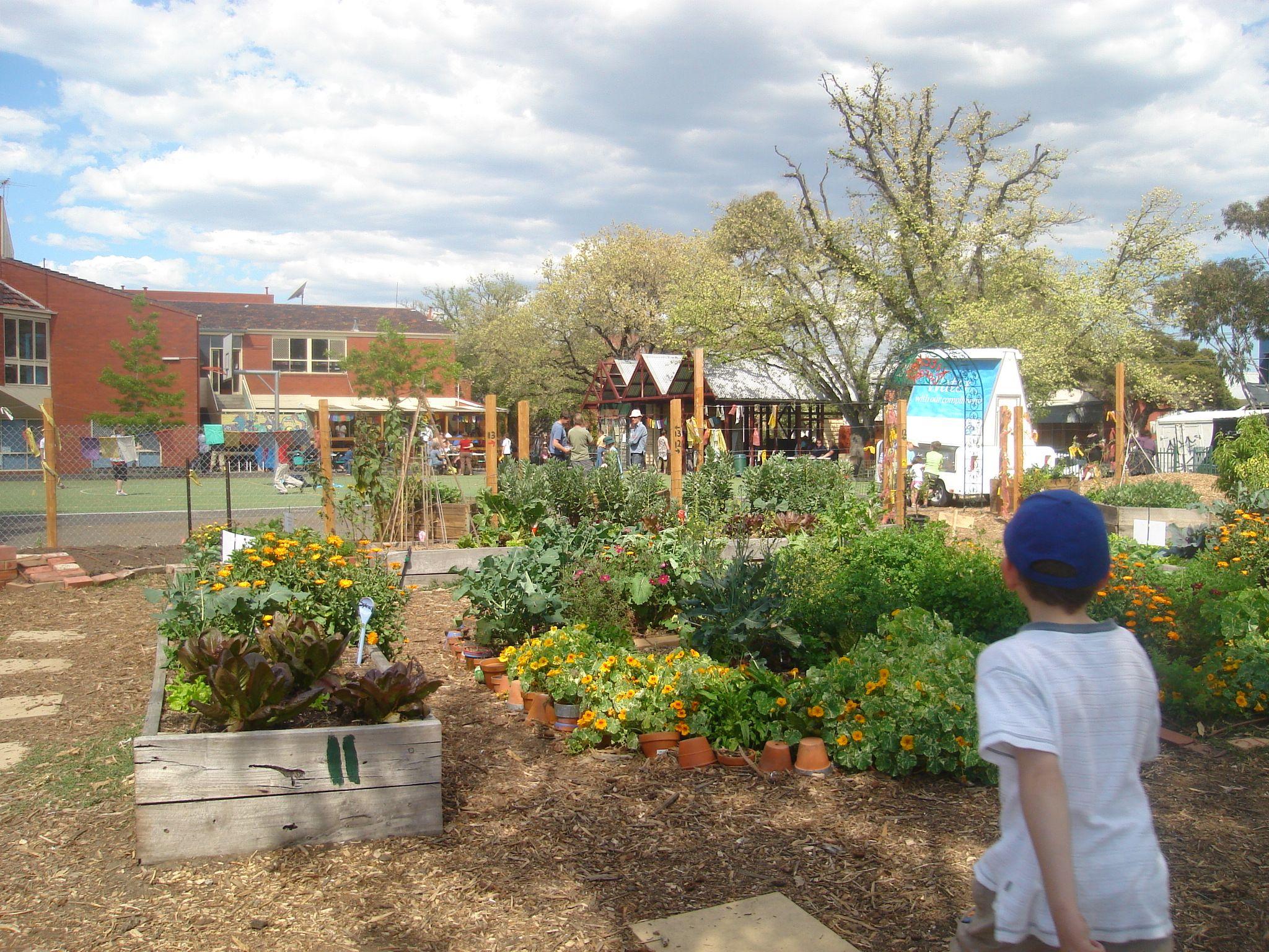 i. SCHOOL KITCHEN GARDENS | Gardens, Garden ideas and Edible garden