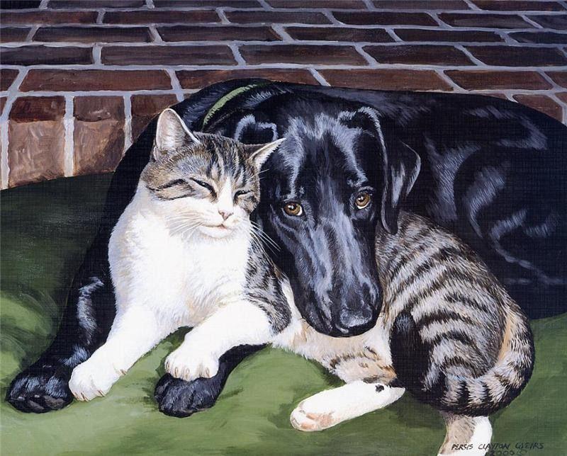 цветные картинки собак и кошек словами, стихах шекспира