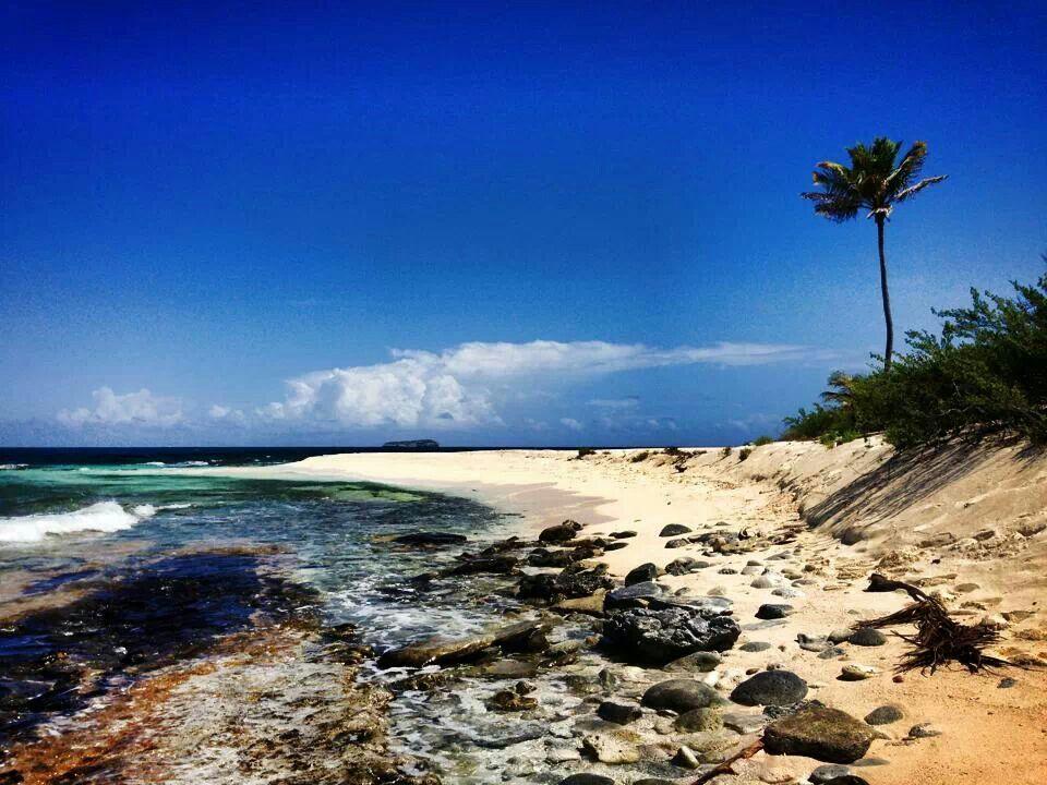 b8674b60de0f0 Punta Arena - Isla de Mona, Puerto Rico | Cloud 9 imagination ...