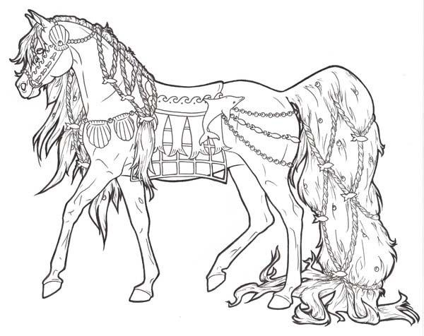 Horse Horse With Long Ponytail In Horses Coloring Page Coloring