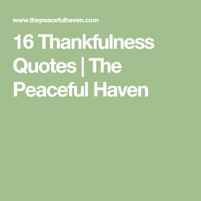 Thankfulness Quotes 16 Thankfulness Quotes  Pinterest  Thoughts