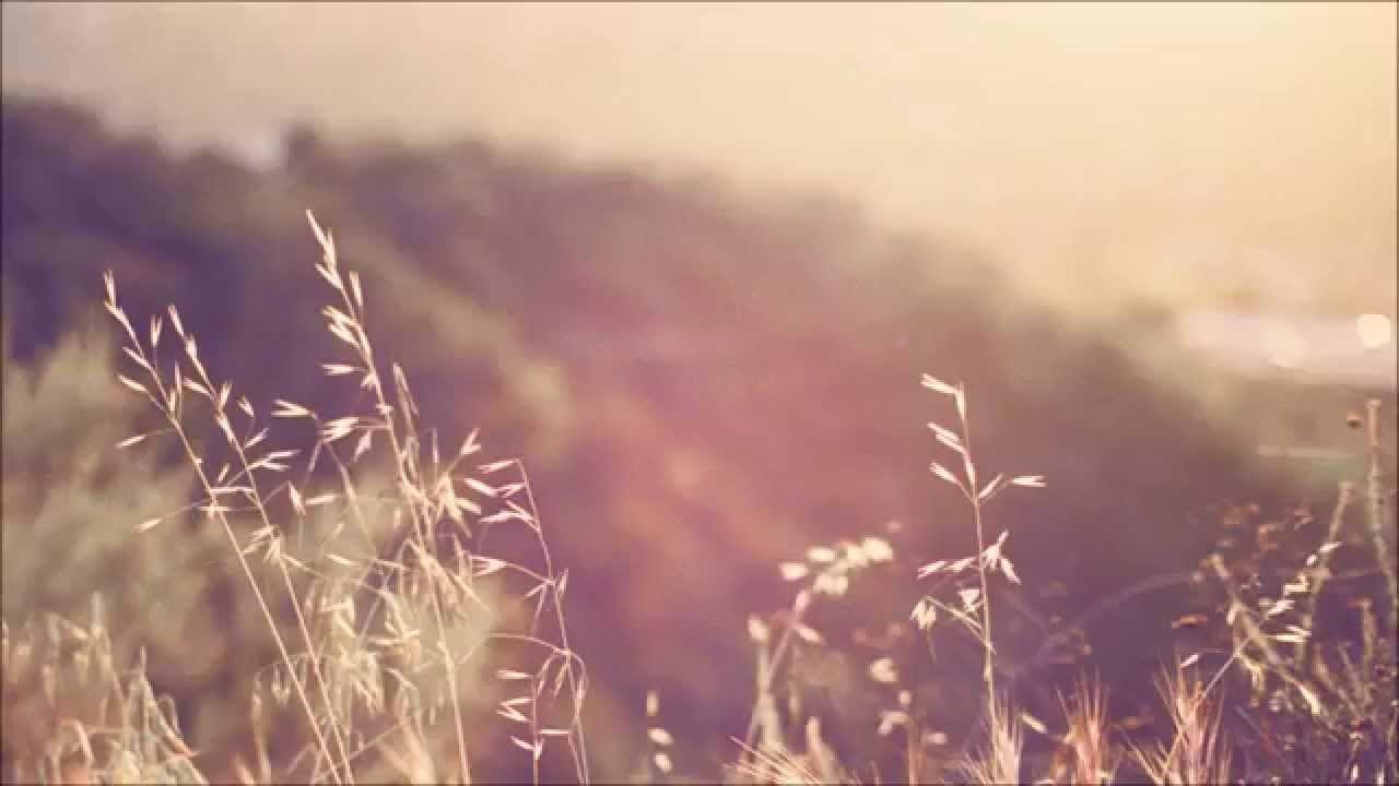 Kathryn Gallagher - Damaged Lyrics (Thanks for Sharing ost.)