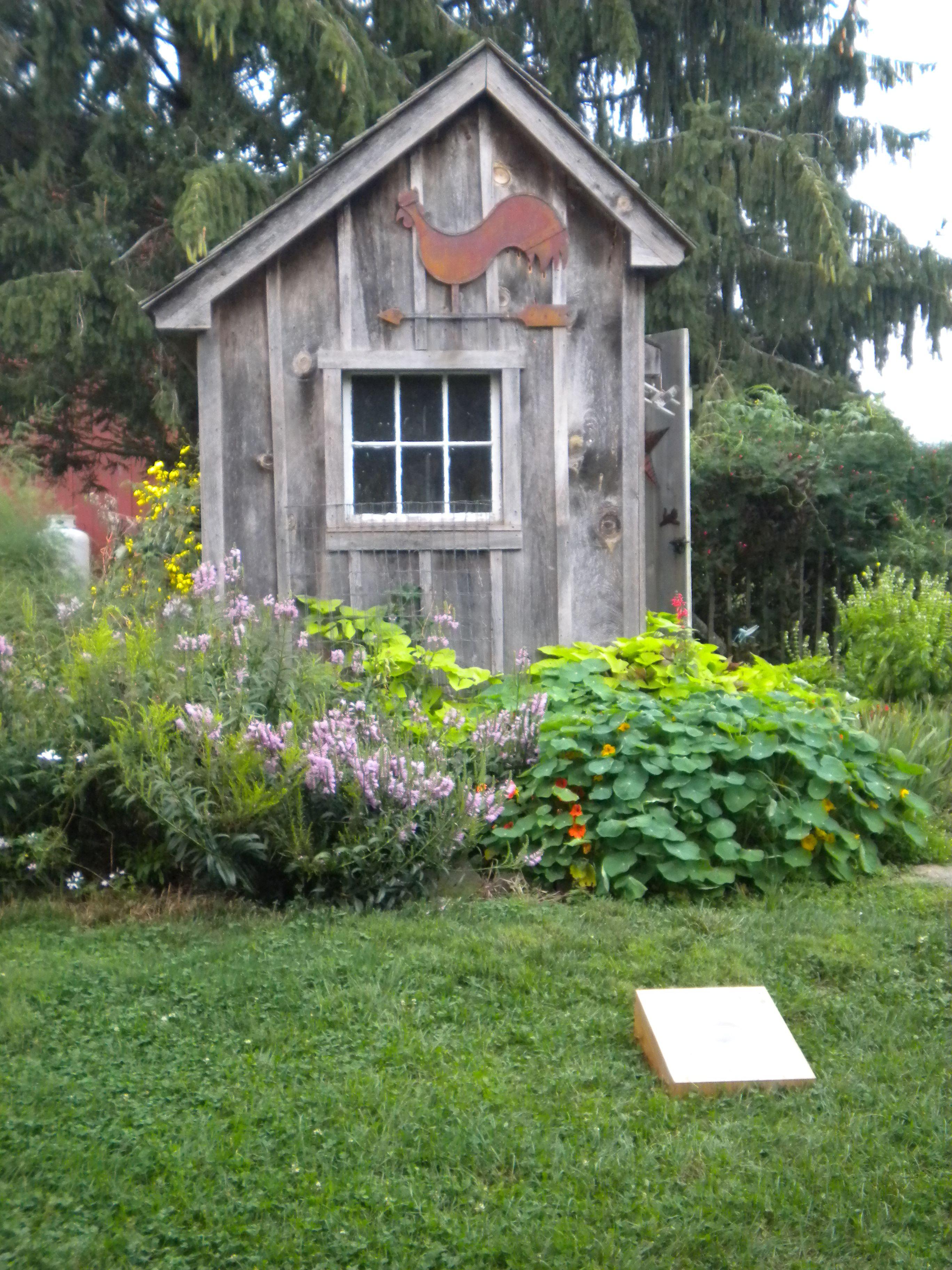 Backyard Chicken Coop Plans Backyard Chicken Coops: Homestead Chickens, Chickens Backyard, Chicken Coop Run