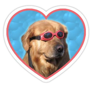 'Doggo Stickers Swimmer Dog' Sticker by Elisecv Cute