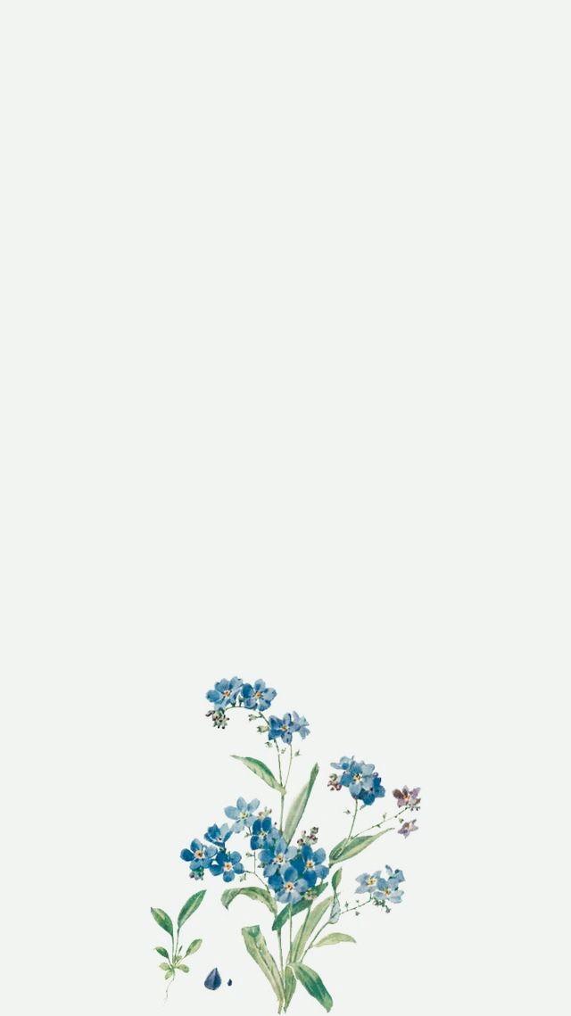 Pin By ᶠˡᵒʳ ᵒˡᵐᵒˢ On Korda Simple Iphone Wallpaper Aesthetic Iphone Wallpaper Vintage Flowers Wallpaper