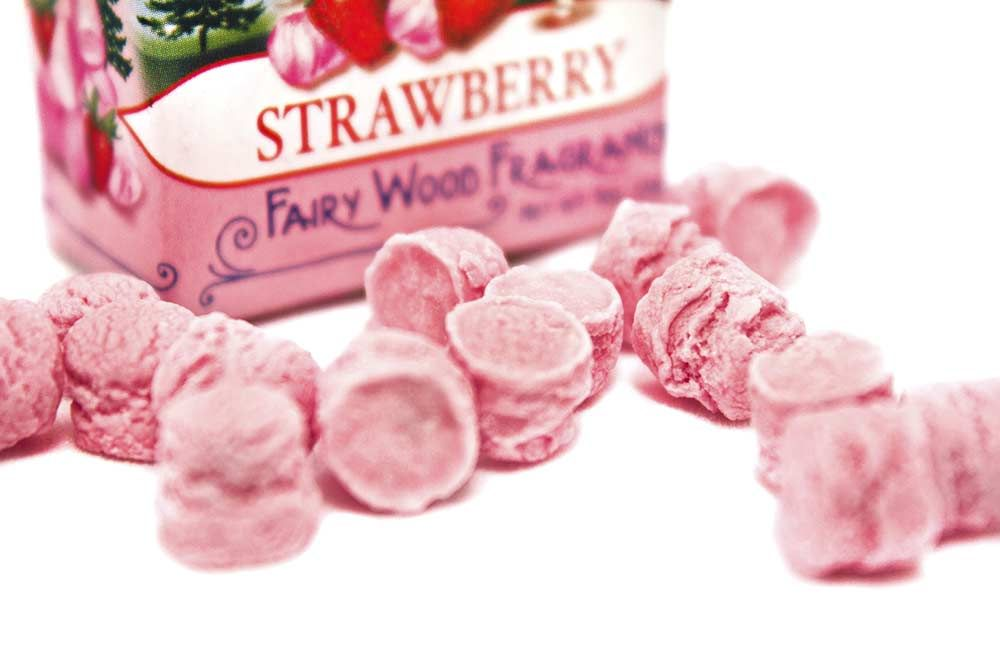 Leone Sweet Pets Tin Strawberry Pastille Candies Strawberry
