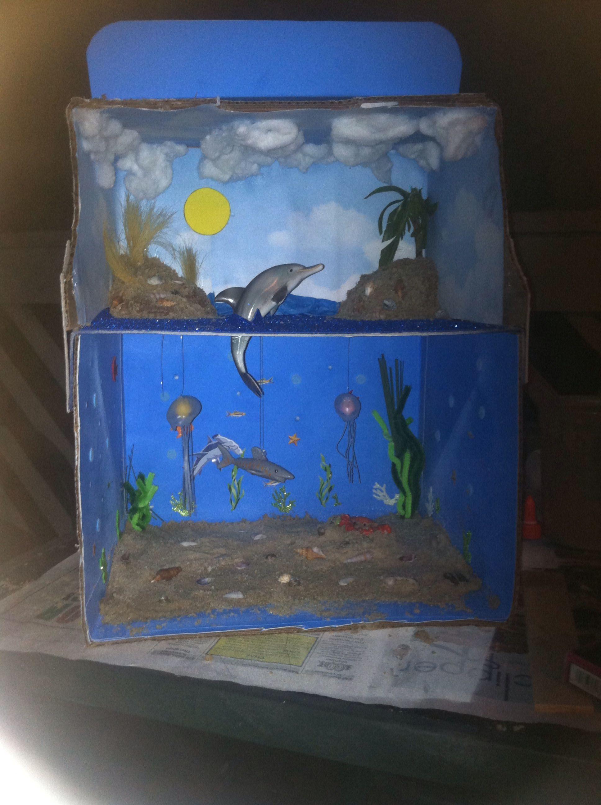 Kids Diorama With Details: Atlantic Ocean Diorama. So Proud!
