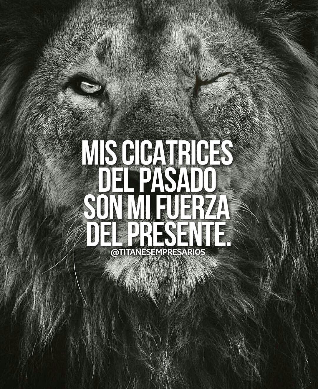 Pin De Rosario Jimenez En Queen Frases Motivadoras