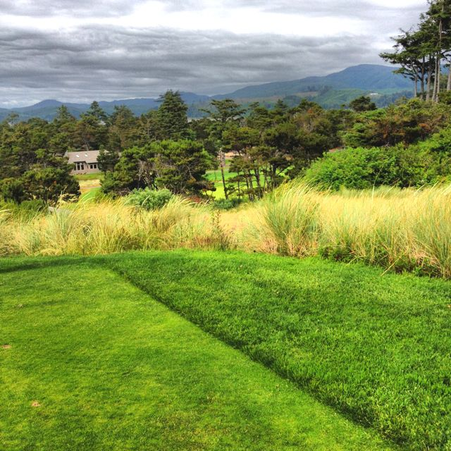 34+ Back nine golf course bend or ideas in 2021