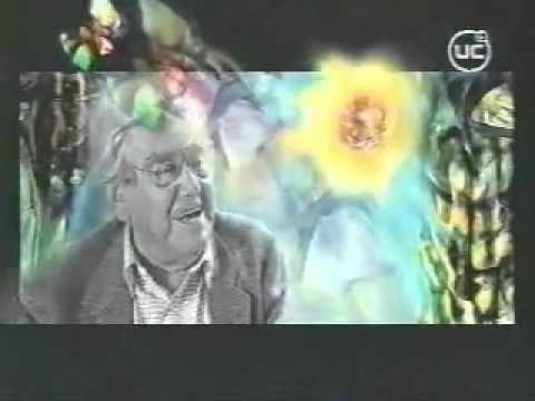 ▶ Roberto Matta :: Reflexiones - YouTube