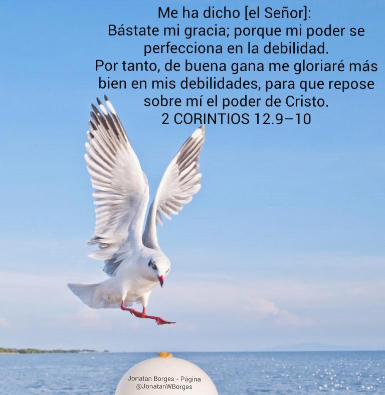 Jonatan Borges : #Promesas