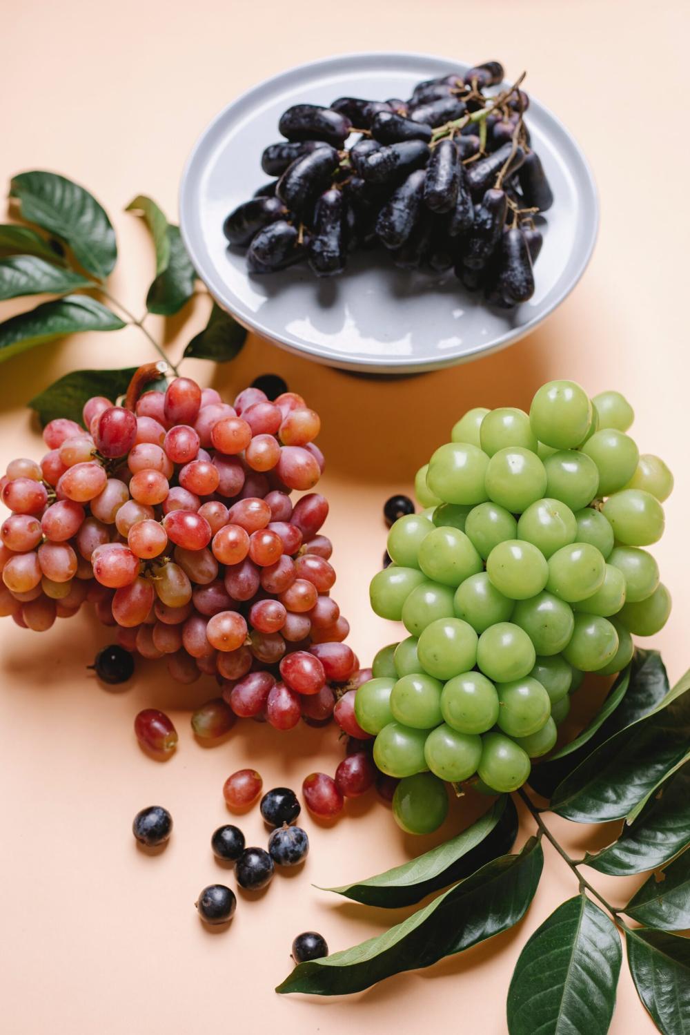 اعلان عن منتج واعلان عن خدمة مع 50 نموذج In 2021 Food Portions Keto Diet Food