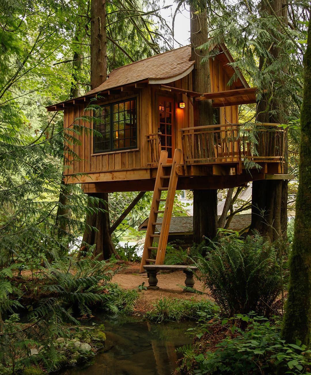 Treehouse | Never Never Land | Pinterest | Casas de arbol, El arbol ...