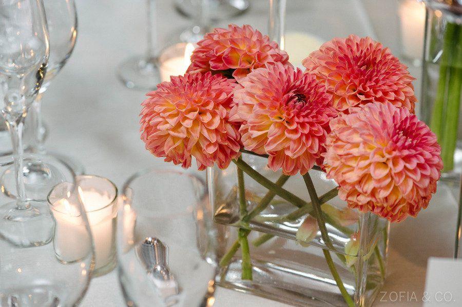 Instead of dahlias: http://www.stylemepretty.com/2015/04/16/get-the-look-wedding-flower-alternatives/