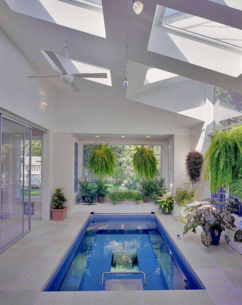 Modern Interior Pool With Skylights Enclosure Clean White Walls Glass Windows Vivid Plants Small Indoor Pool Indoor Swimming Pool Design Luxury Swimming Pools