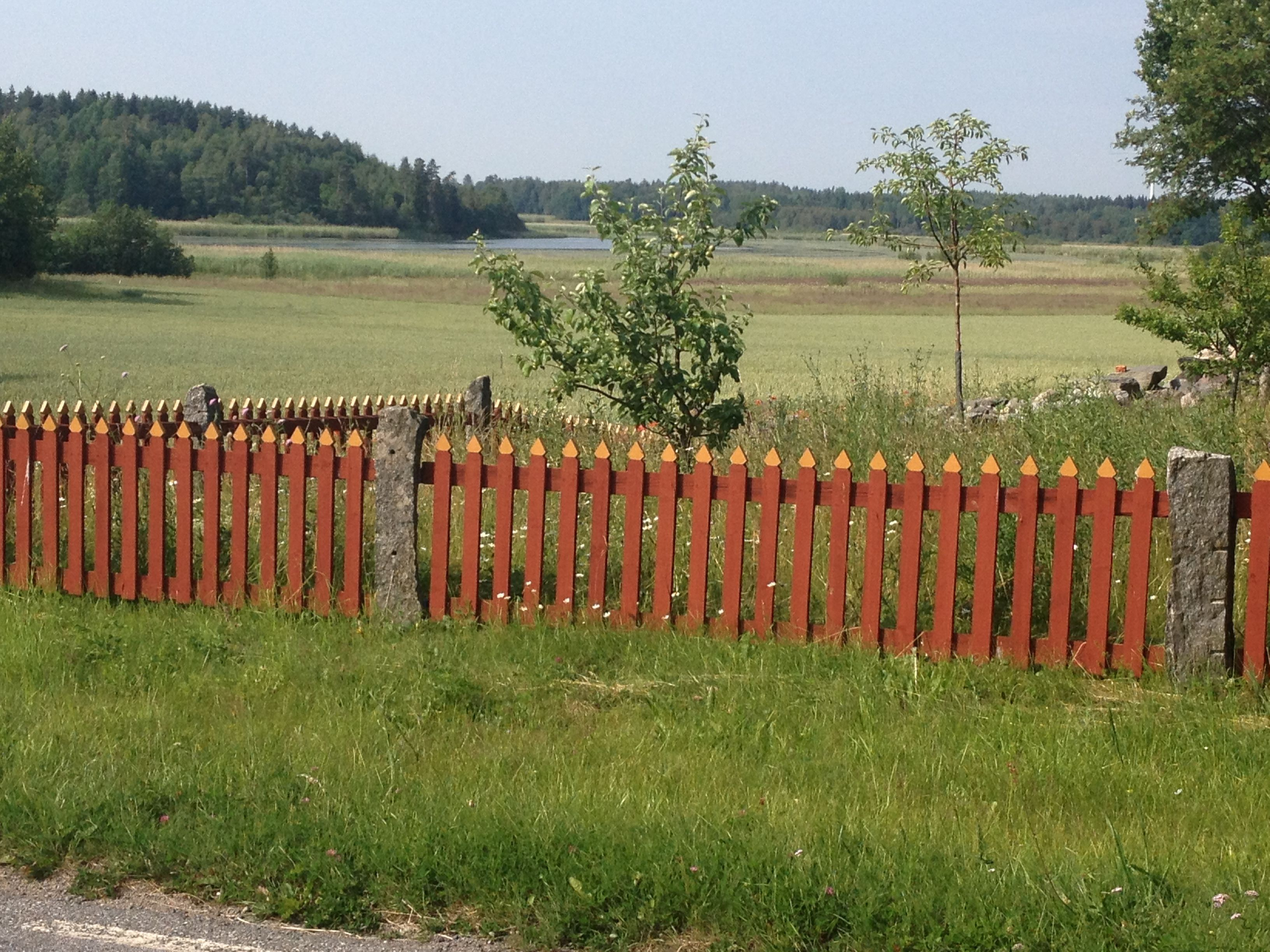 Fence in Roslagen