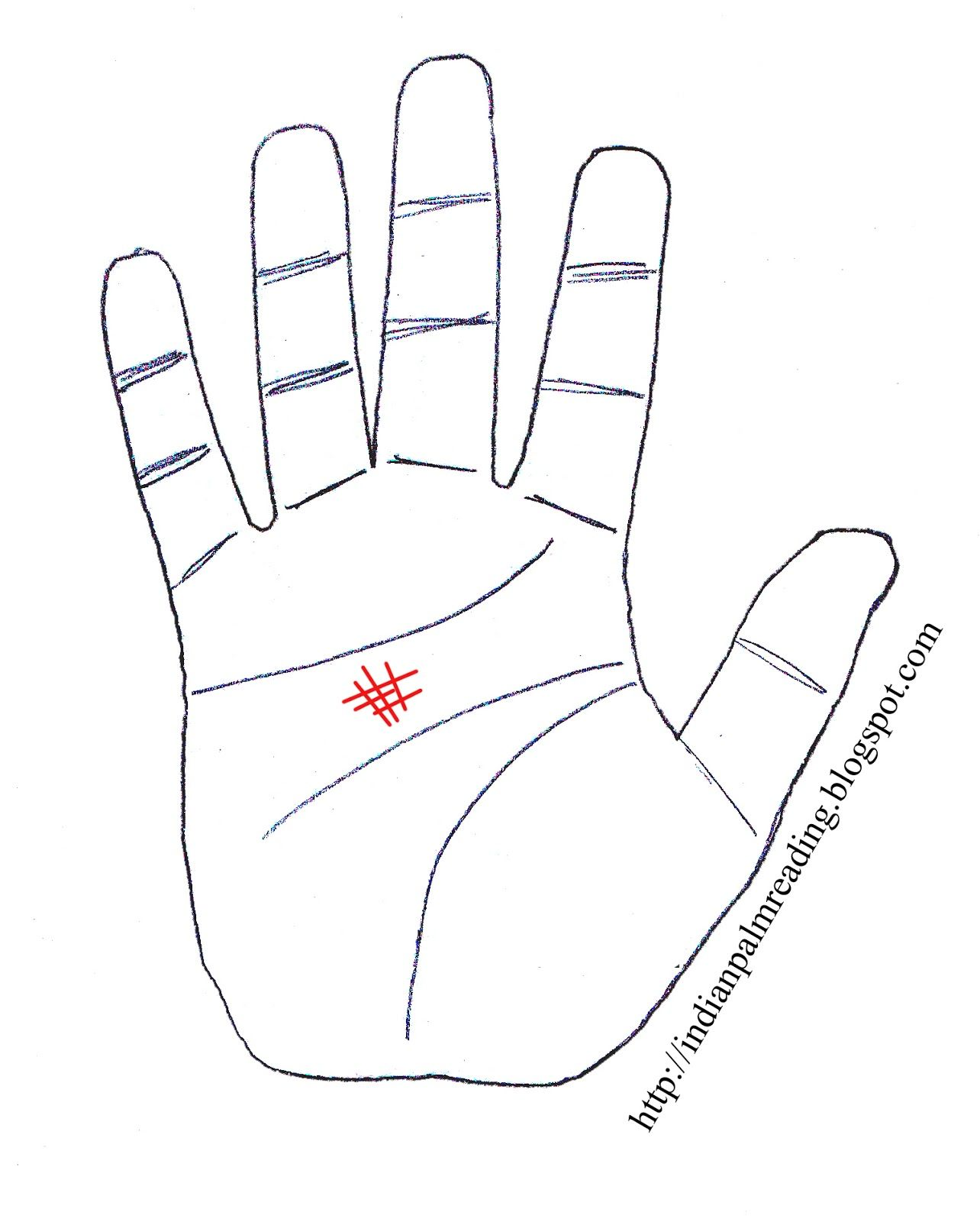 Sign Of Madness In Palmistry Palmistry Indian Palmistry Palm