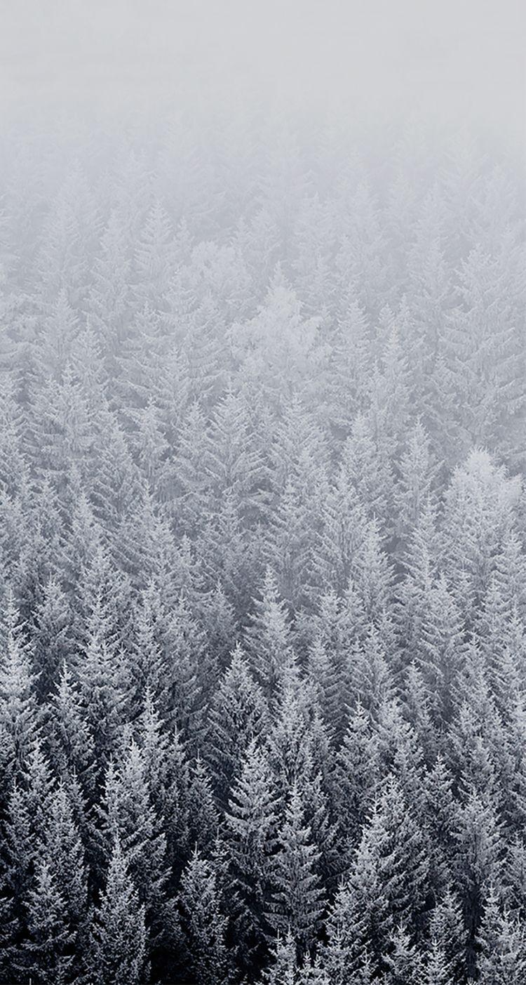 Plano de fundo neve pap is de parede pinterest for Choix ecran photo