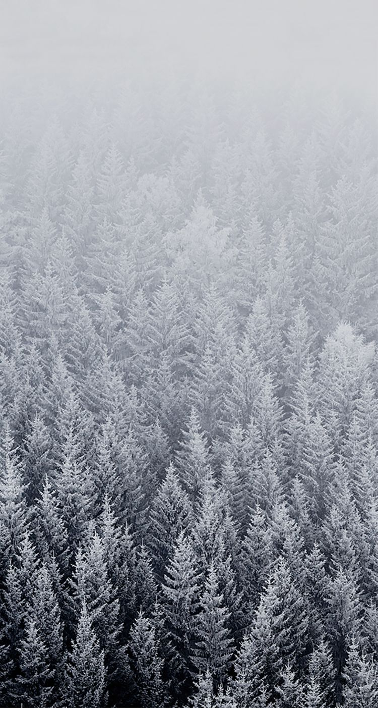 Iphone wallpaper tumblr snow - Wallpaper For Iphone Ipad