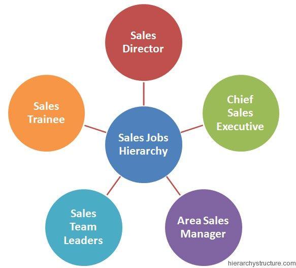 Sales Jobs Hierarchy  Jobs Hierarchy    Sales Jobs