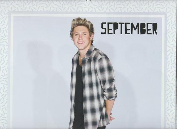 Niall for the 2016 1D calendar
