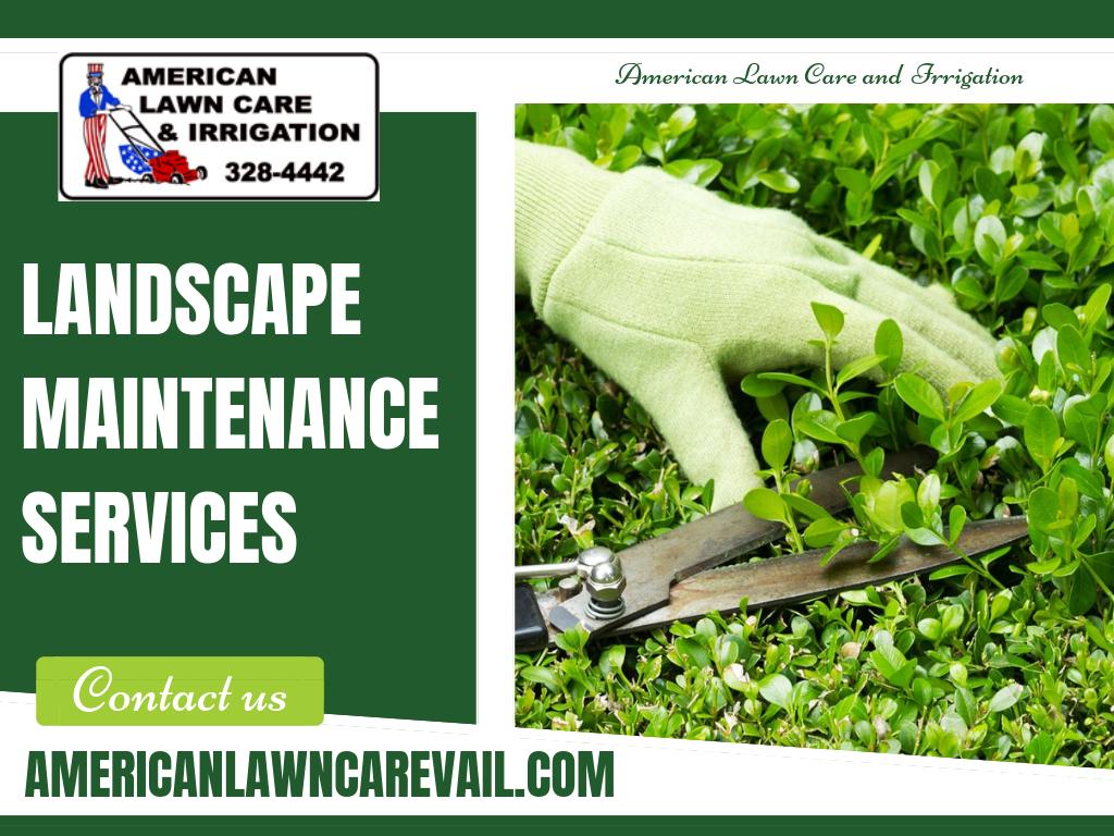 Landscape Services In Vail Co Landscape Services Landscape