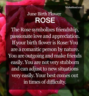 Image result for june birth flower