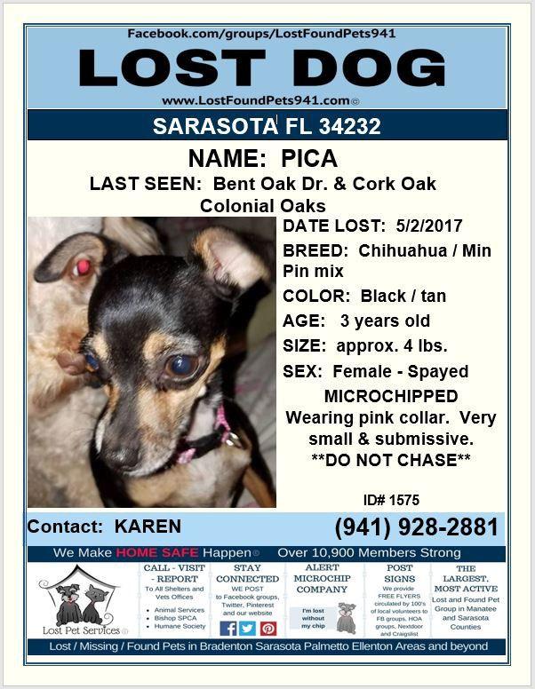 Pin On Lost Dogs Sarasota Manatee County Fl