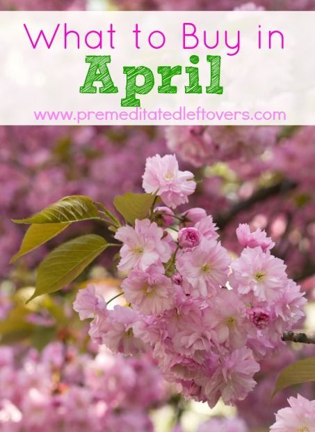 What to Buy in April - Here is a list of what to buy in April, including seasonal produce, baking supplies, Easter items, and home and garden supplies, to Buy in April - Here is a list of what to buy in April, including seasonal produce, baking supplies, Easter items, and home and garden supplies,