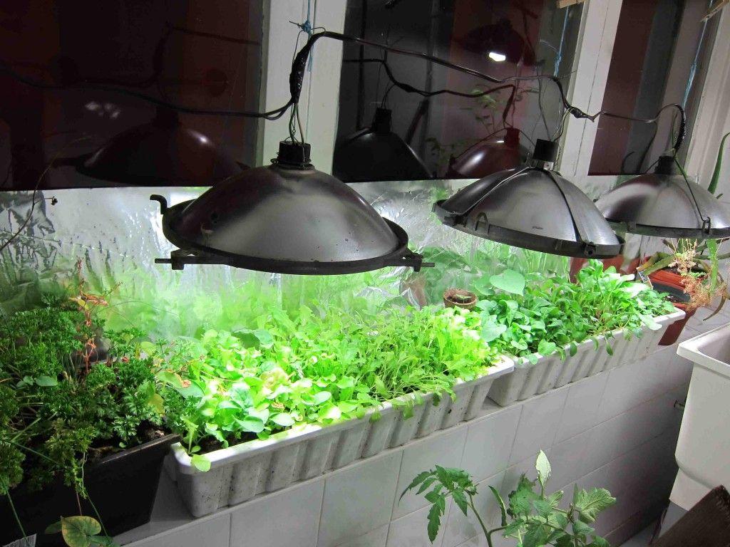 Diy how to make a 15 indoor greenhouse urban organic for Eco indoor garden house