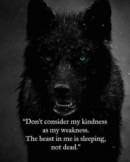 97+ EXCLUSIVE Wolf Quotes That Will Leave You Speechless being a lone wolf quotes