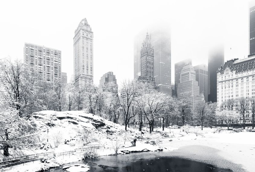 The Pond in Central Park on a foggy winter morning, New York