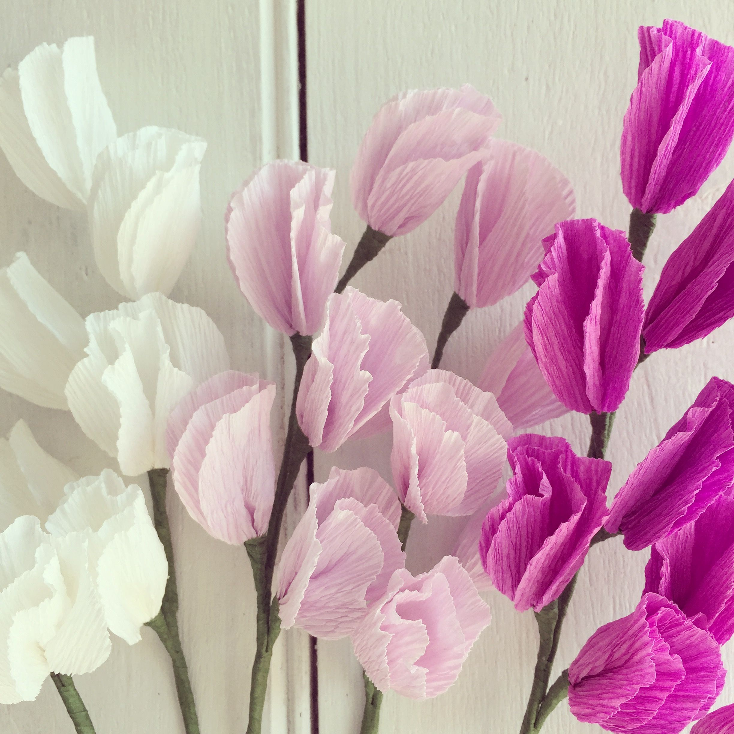why not make some cute crepep paper sweet peas using the