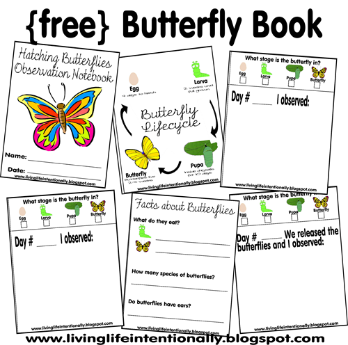 free printable butterfly book including space to write observations of caterpillars pupa and hatching butterflies - First Grade Printable Books
