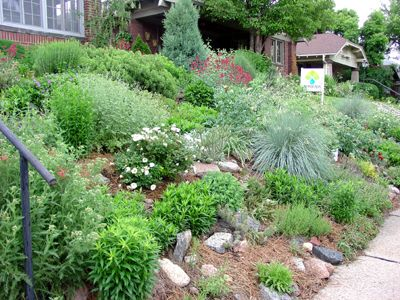 what to plant on a slope | Erosion Control Protects Natural Resources