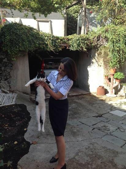 blog di Sara: Il gatto comunista ha una madre archivista....e pa...