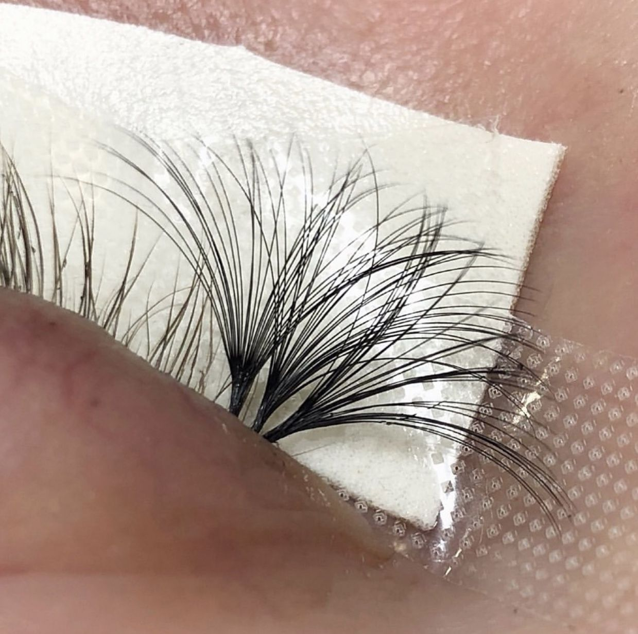 How to create volume lash fans .05 12mm eyelash extensions