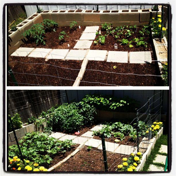 Cinder Block Garden With Walking Path