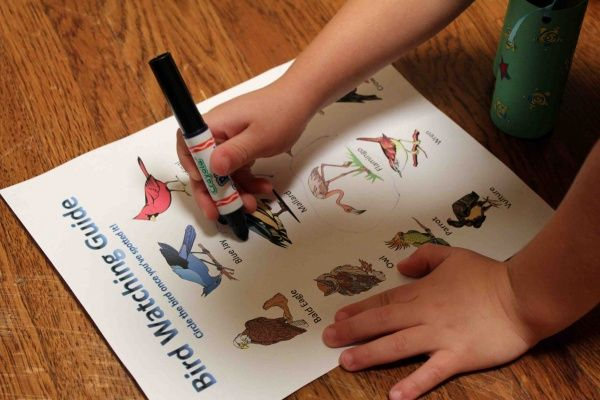 """Birdwatching"" in the house...includes printable birds and bird spotting list as well as instructions on making binoculars and a trail mix."