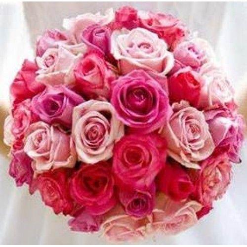 Tons de rosas