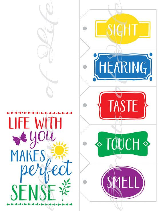 Five Senses Gift Tags & Card. 5 senses Instant download printable. Perfect sense print. Christmas gi